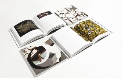 volkan diyaroglu book