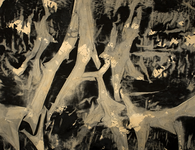 roots_on_the_lake_173X224.jpg